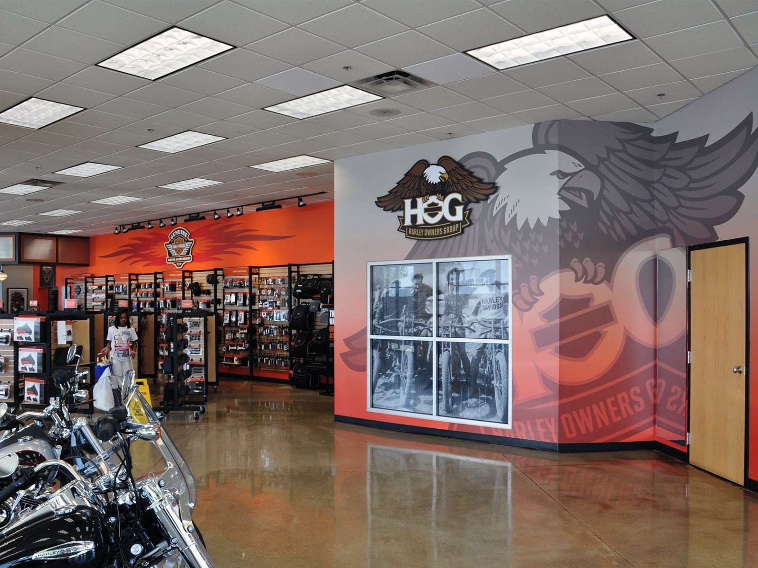 Harley Davidson Wall Graphics and Signage
